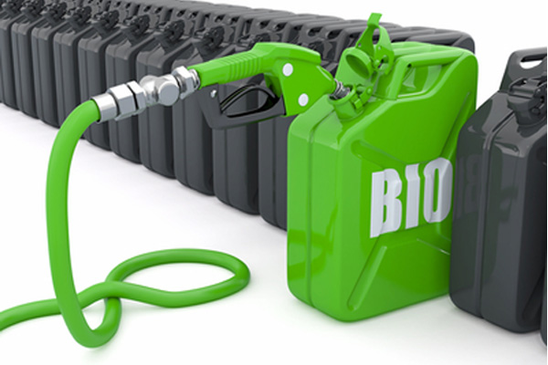 Fueling Up With Alternative Biofuel