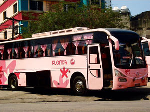 HINO RM Bus
