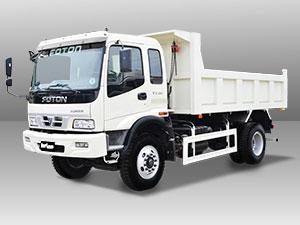 foton Hurricane Dump Truck car model