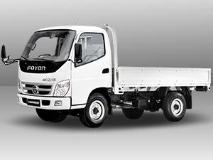 foton TS 2 Dropside truck model