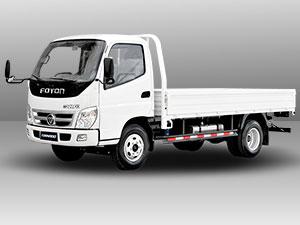 foton TS 2.5 Dropside truck model