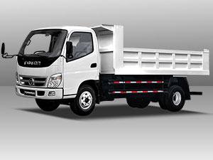 foton TS 2.5 Dump Truck model