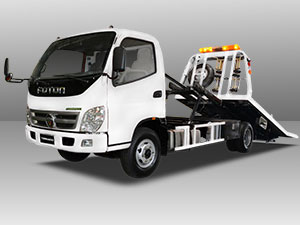foton TS 3.5 Self Loader truck model