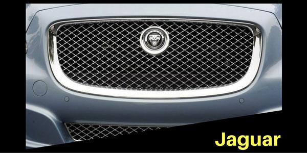 Jaguar Grille