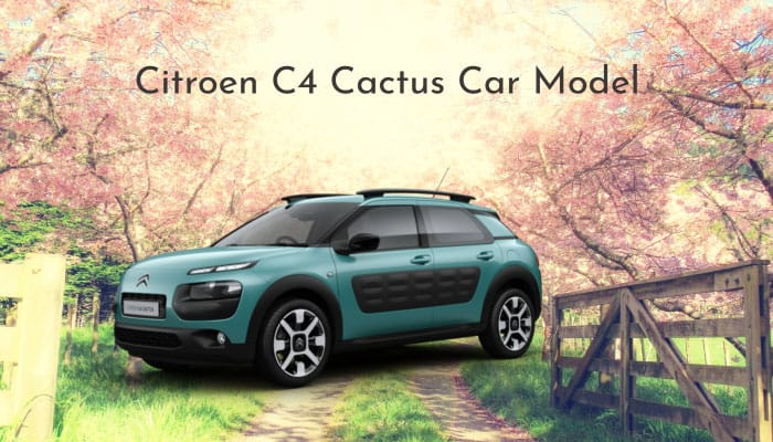 Citroen C4 Cactus Car Model